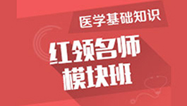 重庆红领名师模块班